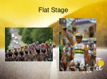 flat stage1