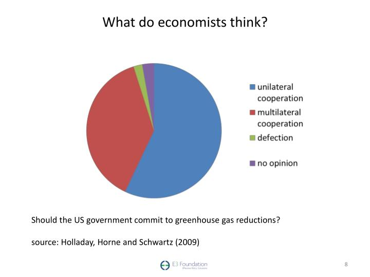 What do economists think?