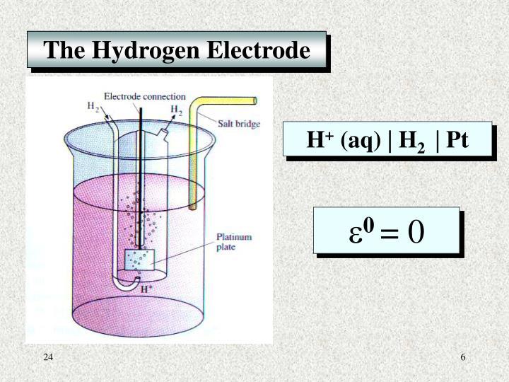 The Hydrogen Electrode