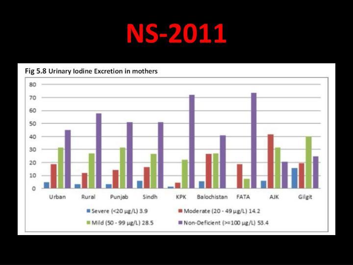 NS-2011