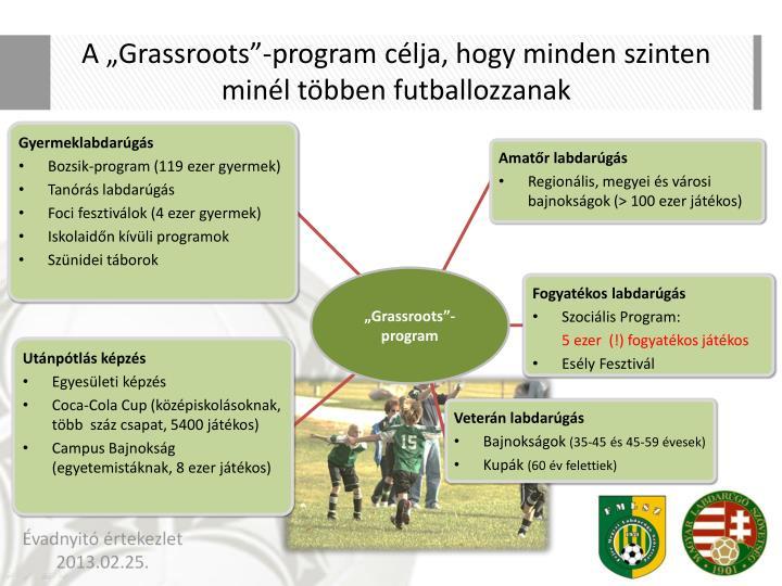"""A """"Grassroots""""-program célja, hogy minden szinten minél többen futballozzanak"""