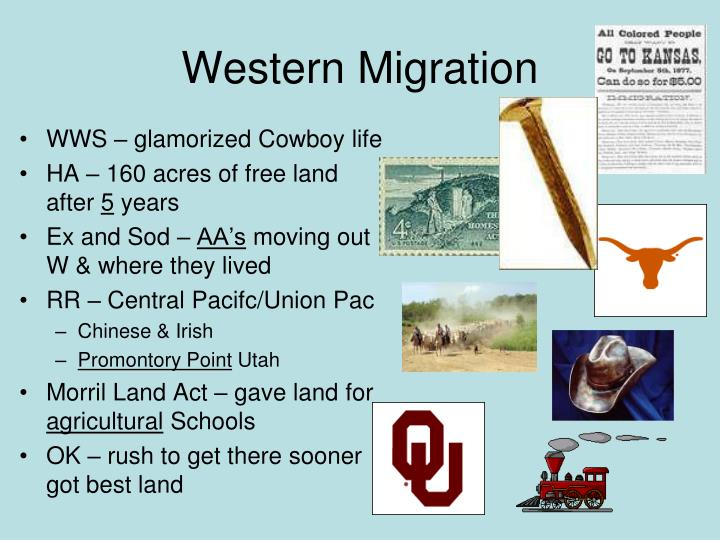 WWS – glamorized Cowboy life