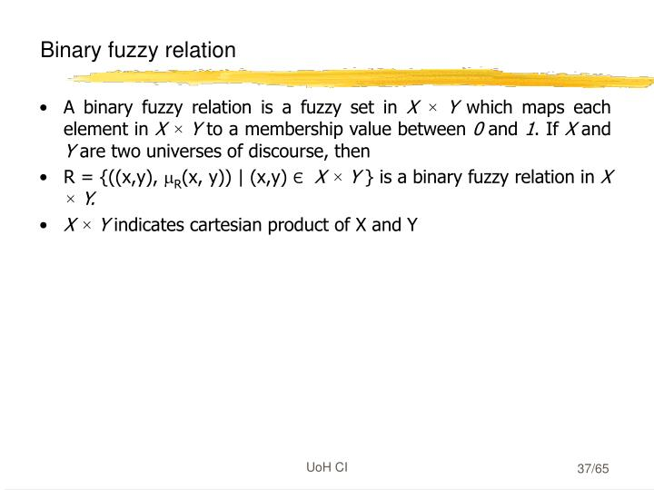 Binary fuzzy relation
