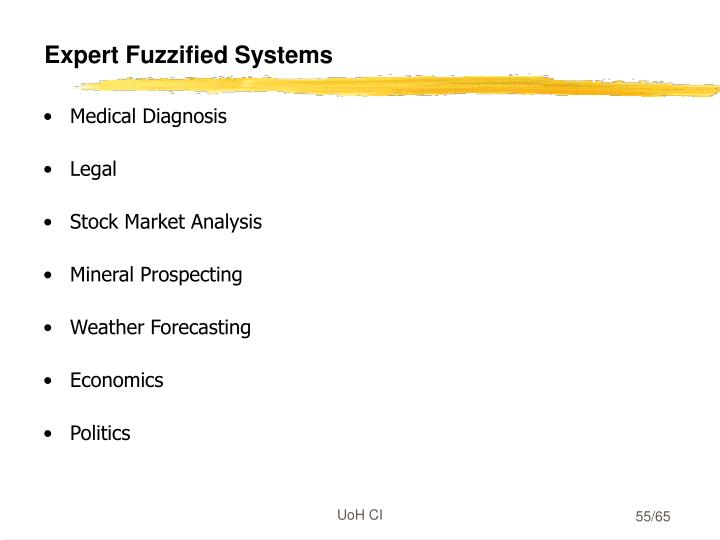 Expert Fuzzified Systems