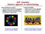 self assembly nature s approach to nanotechnology