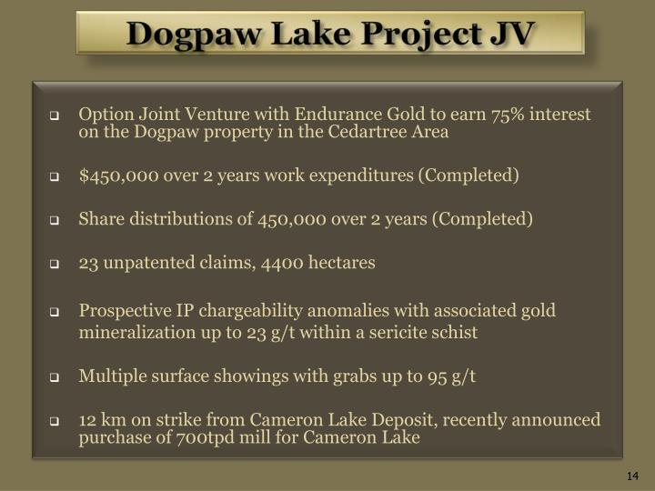 Option Joint Venture with Endurance Gold to earn 75% interest on the Dogpaw property in the Cedartree Area