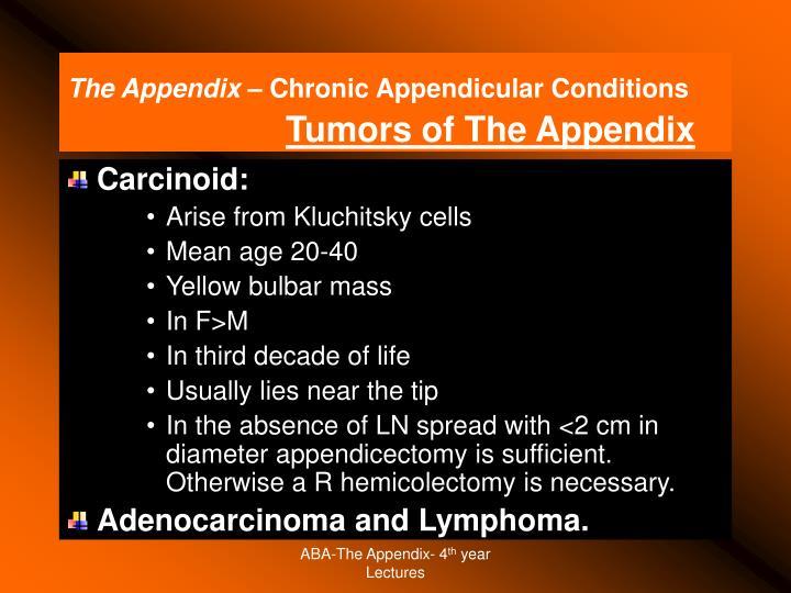 The Appendix –