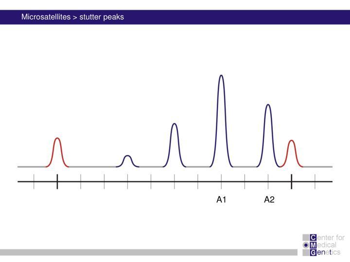 Microsatellites > stutter peaks