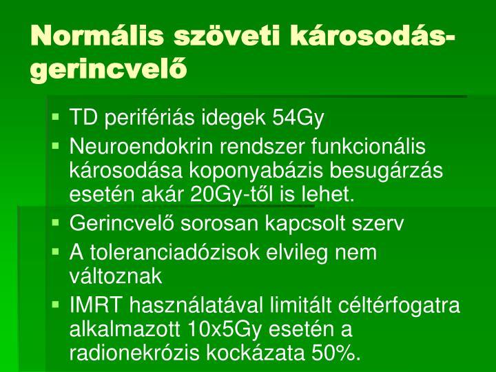 Normális szöveti károsodás-gerincvelő