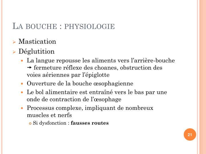 La bouche : physiologie