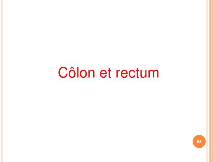 Côlon et rectum
