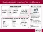 how the internet is changing top level domains