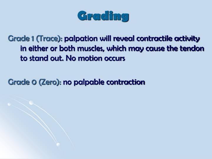 Grade 1 (Trace):