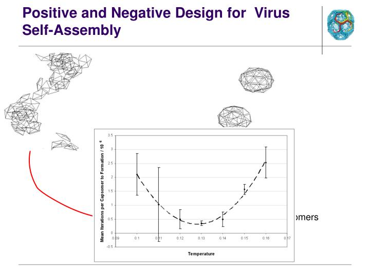 Positive and Negative Design for  Virus Self-Assembly