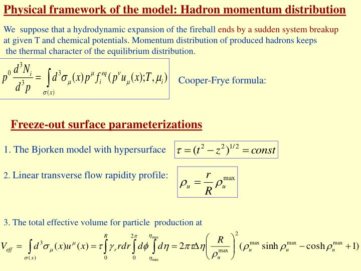 Physical framework of the model: Hadron momentum distribution