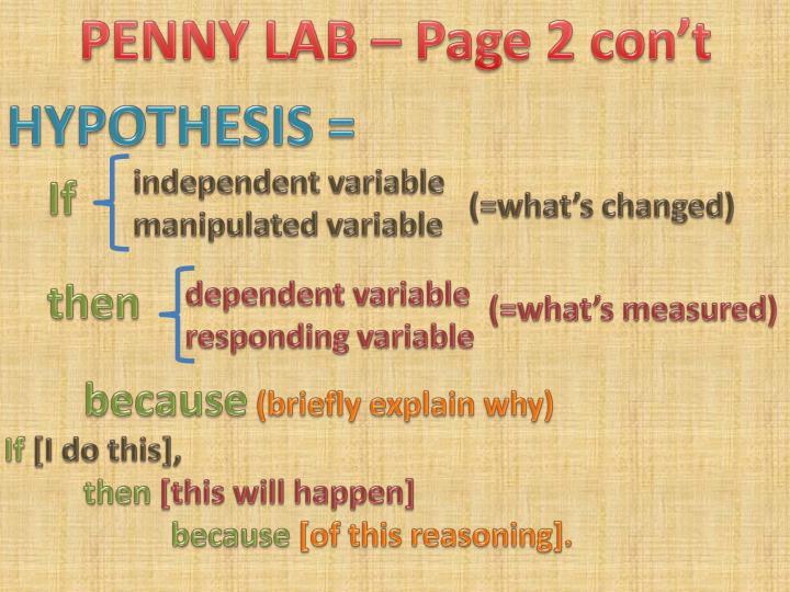 PENNY LAB – Page 2 con't
