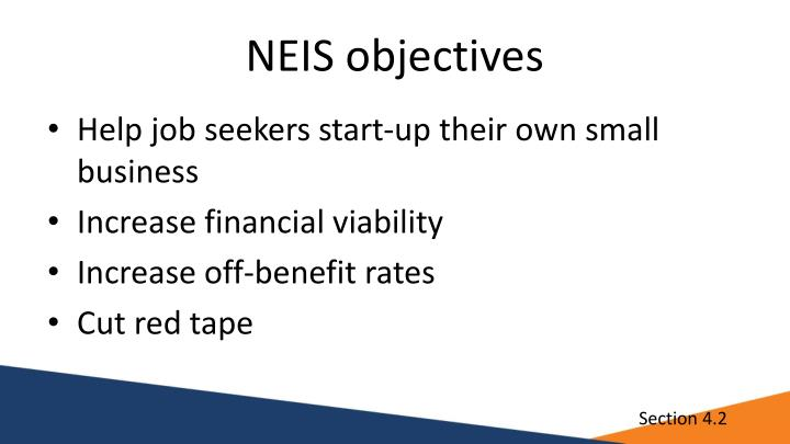 NEIS objectives