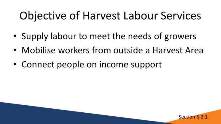 Objective of Harvest Labour Services