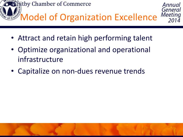 Model of Organization Excellence