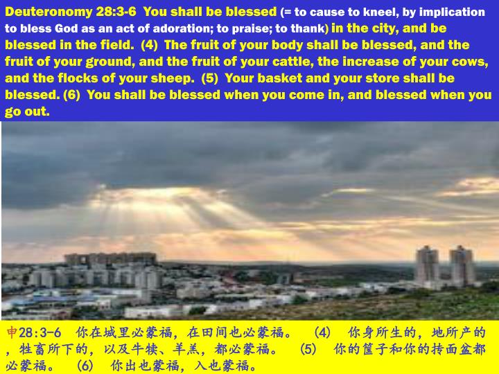 Deuteronomy 28:3-6  You shall be blessed
