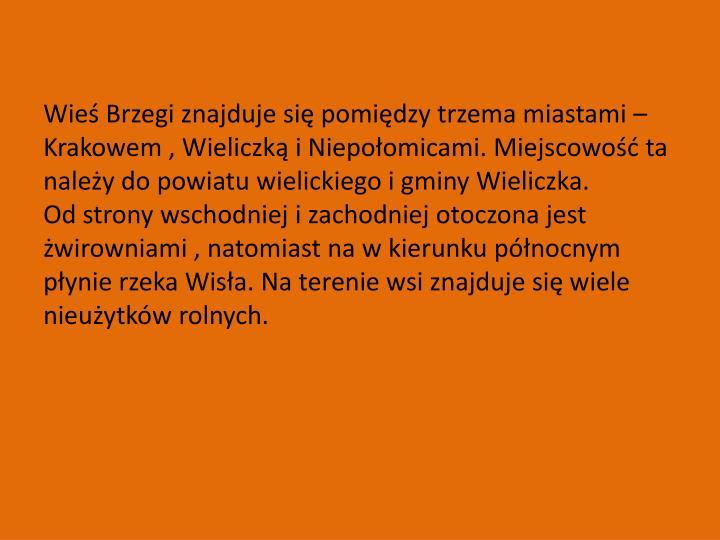 Wieś Brzegi znajduje się pomiędzy trzema miastami –Krakowem , Wieliczką i Niepołomicami. Miejscowość ta należy do powiatu wielickiego i gminy Wieliczka.