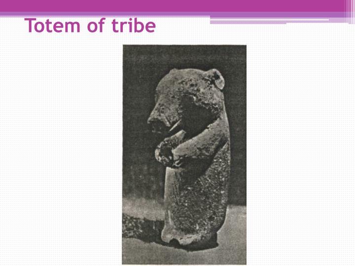 Totem of tribe