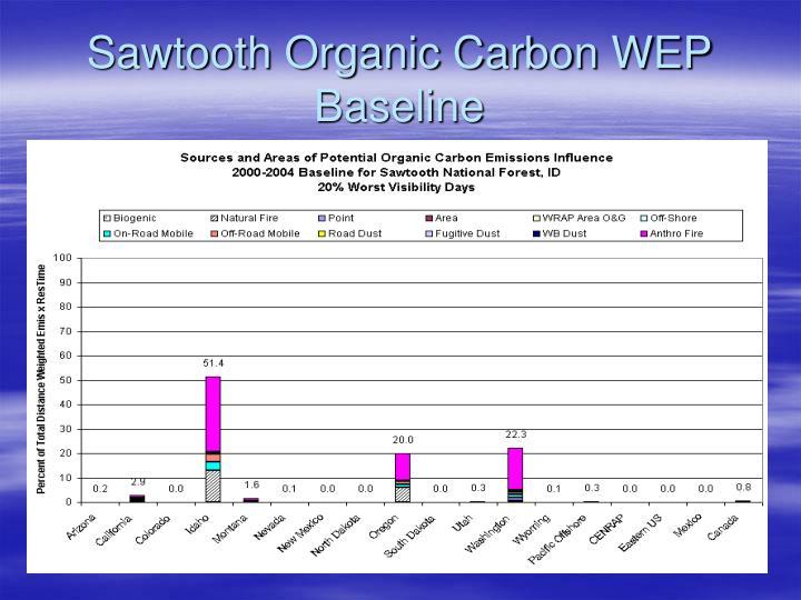 Sawtooth Organic Carbon WEP Baseline