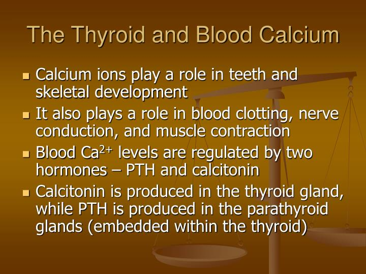 The Thyroid and Blood Calcium
