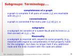 subgroups terminology