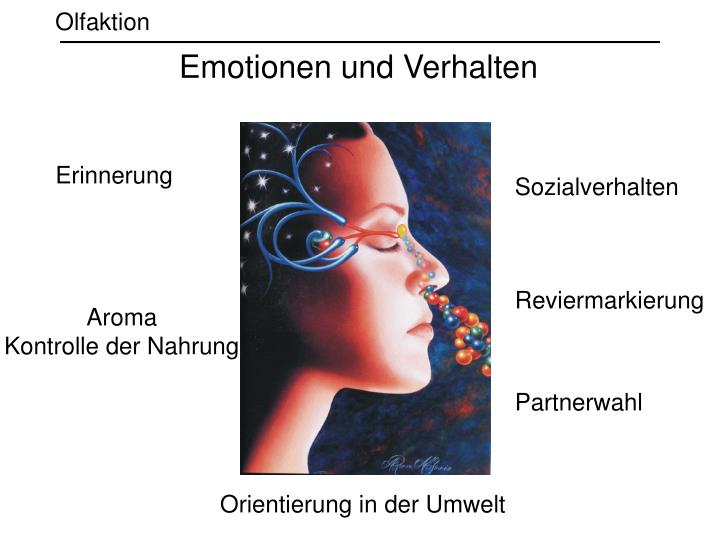 Emotionen und Verhalten