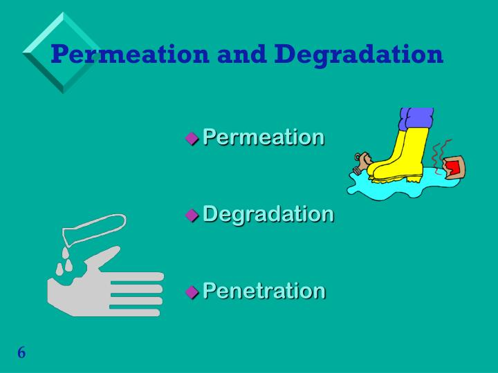 Permeation and Degradation