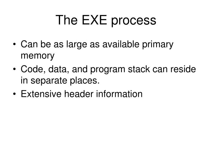The EXE process