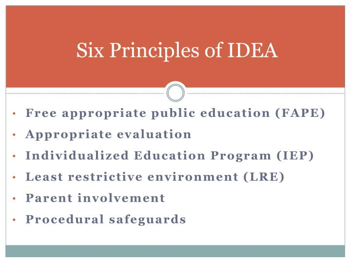 Six Principles of IDEA