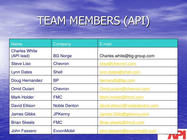 TEAM MEMBERS (API)