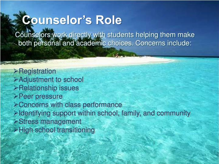 Counselor's Role