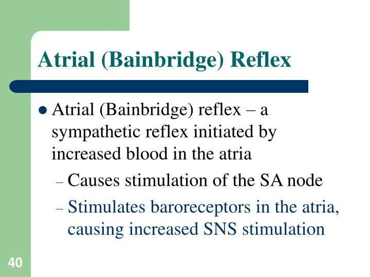 Atrial (Bainbridge) Reflex