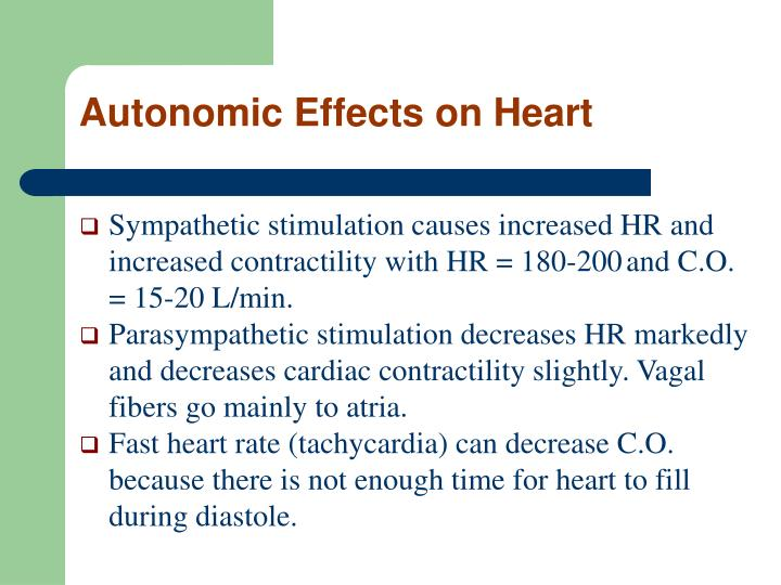 Autonomic Effects on Heart