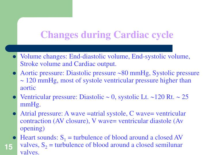 Changes during Cardiac cycle