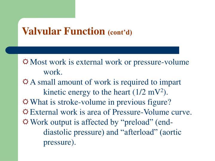 Valvular Function