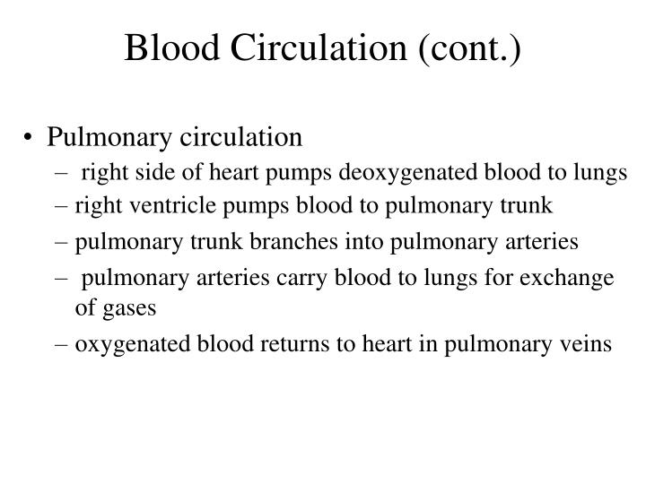 Blood Circulation (cont.)