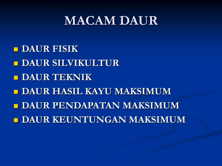 MACAM DAUR