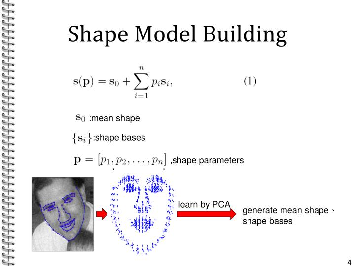Shape Model Building