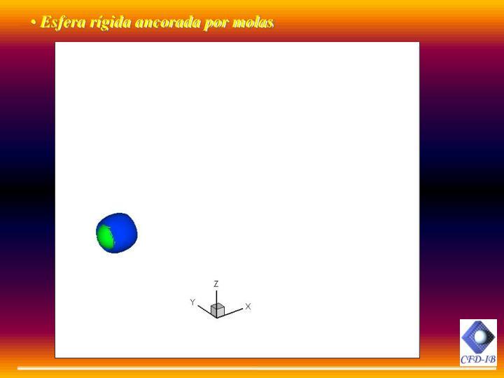 Esfera rgida ancorada por molas