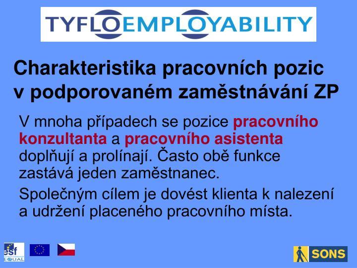 Charakteristika pracovních pozic