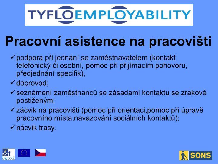 Pracovní asistence na pracovišti