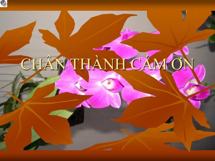 CHN THNH CM N
