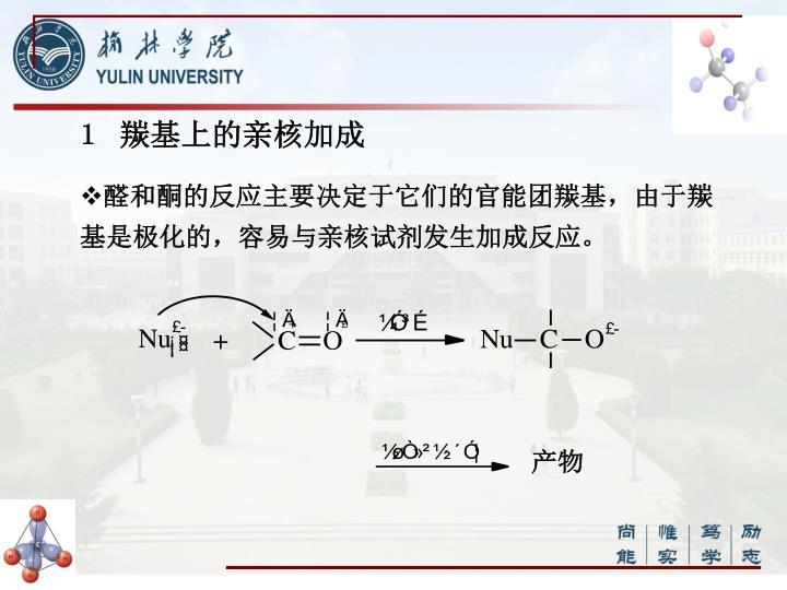 1 羰基上的亲核加成