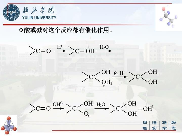 酸或碱对这个反应都有催化作用