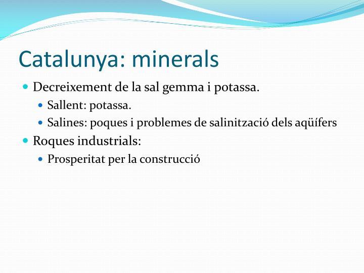 Catalunya: minerals