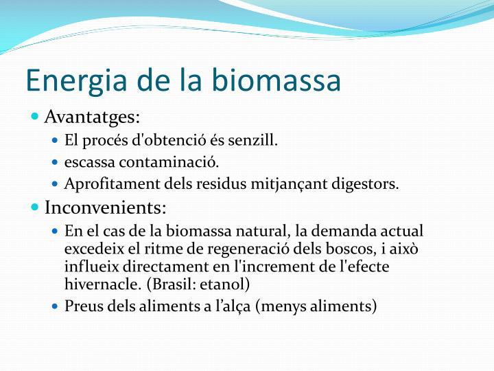 Energia de la biomassa